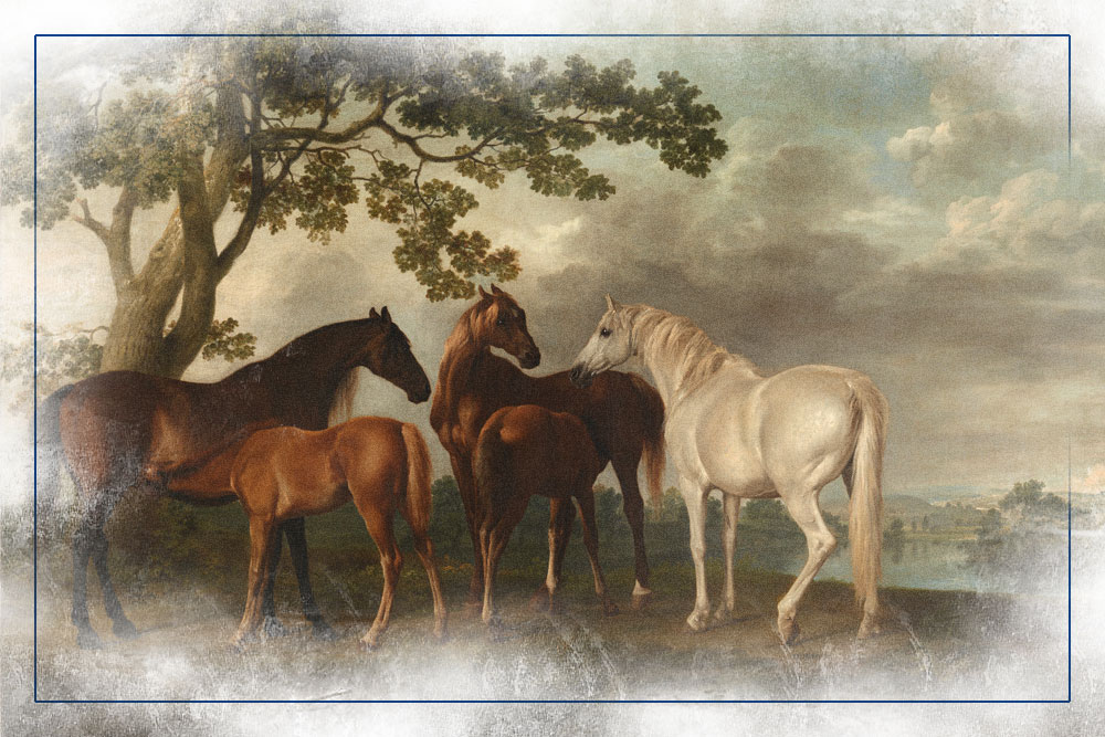 equine-history-collective-thumbnail